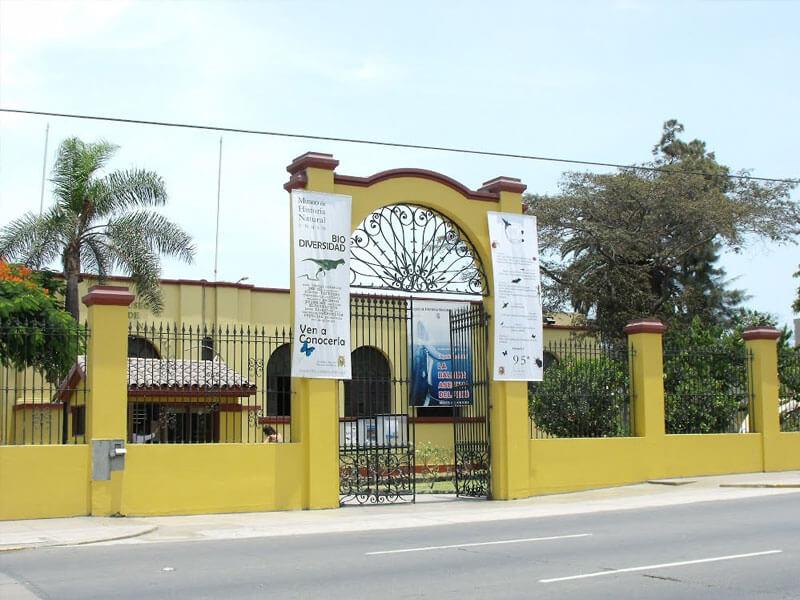 ¿Quieres conocer el Museo de historia de Lima?
